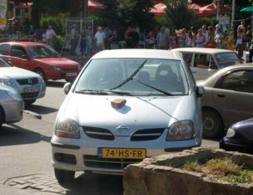 авто вандалы - фото 12