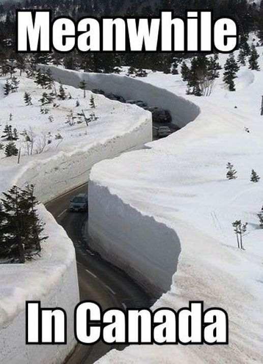 Дорогу засыпало снегом в Канаде