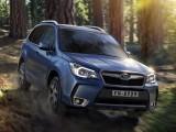Обновленный Subaru Forester 2015 в России (цена, фото)